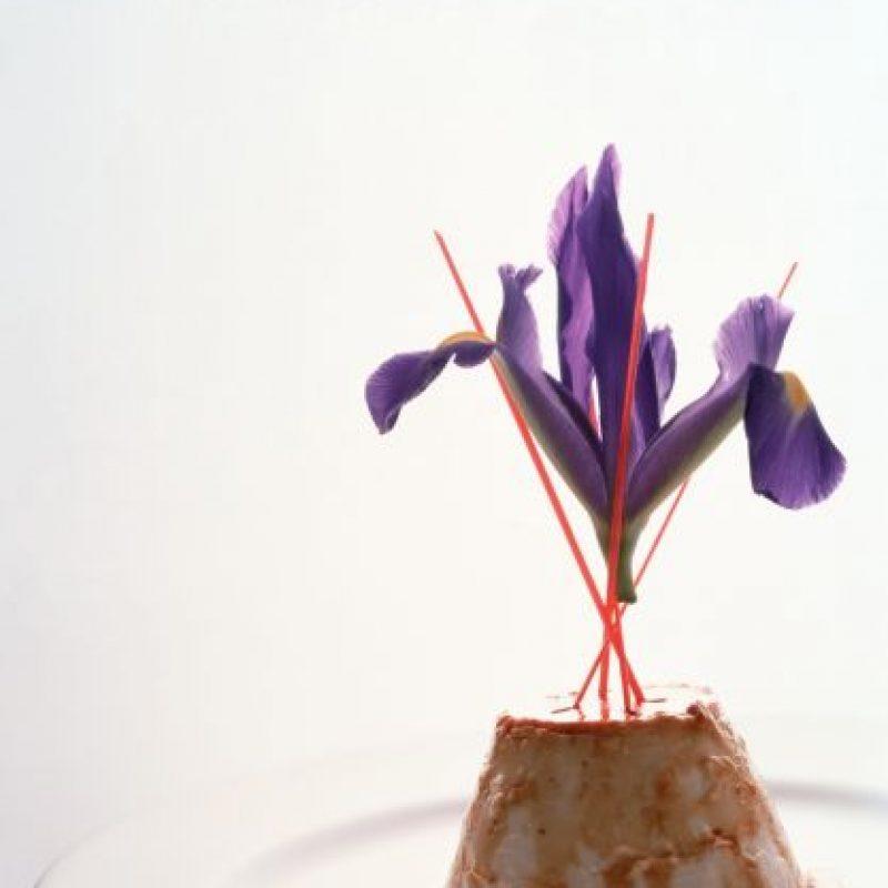 Flan de leche de coco con piña tropical a las especias Foto:Cortesía: Restaurante Dulce Patria