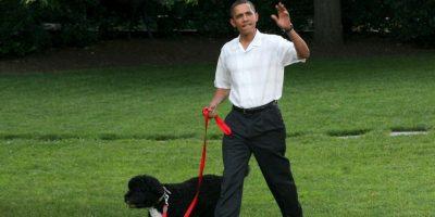 En Estados Unidos fue fundado el National Puppy Day Foto:Getty Images