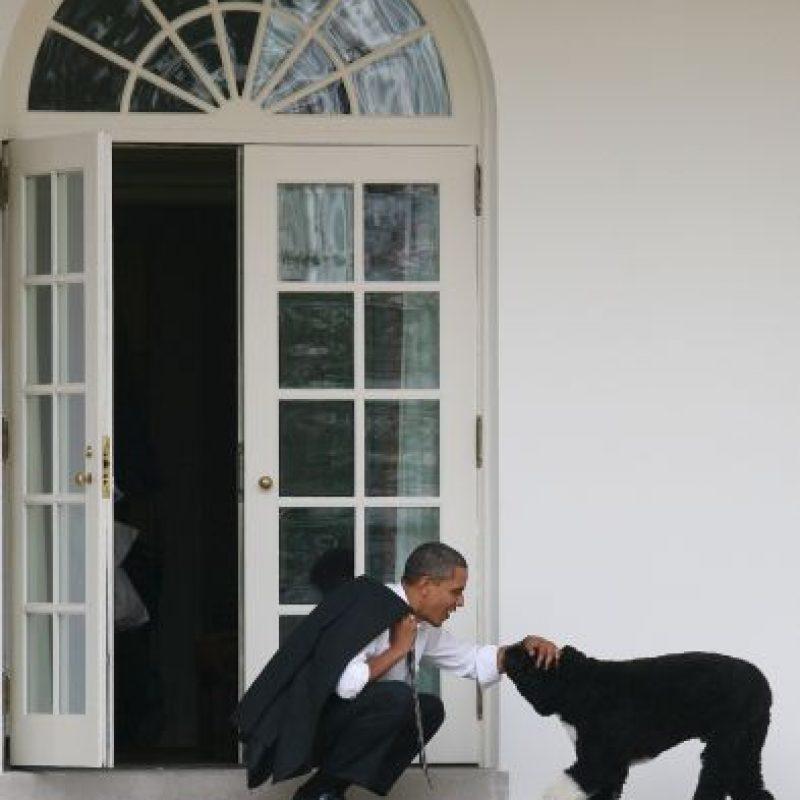Obama gusta de dar cariños a su mascota Foto:Getty Images