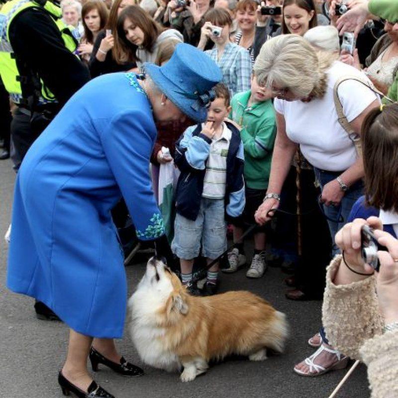 La Reina Isabel II regala unas caricias a sus mascotas Foto:Getty Images