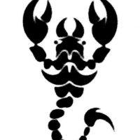 Si nacieron entre el 24 de noviembre y el 29 de noviembre, son Escorpión. Foto:Tumblr