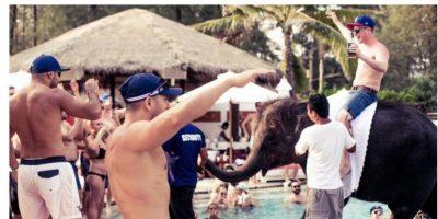 Exótica fiesta tailandesa deja que sus invitados monten cría de elefante