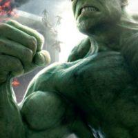 """Hulk"" Foto:Facebook Avengers"