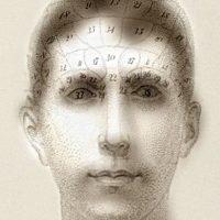 Las zonas del cerebro deben desaparecer al alejar la vista Foto:mit.edu – Aude Oliva