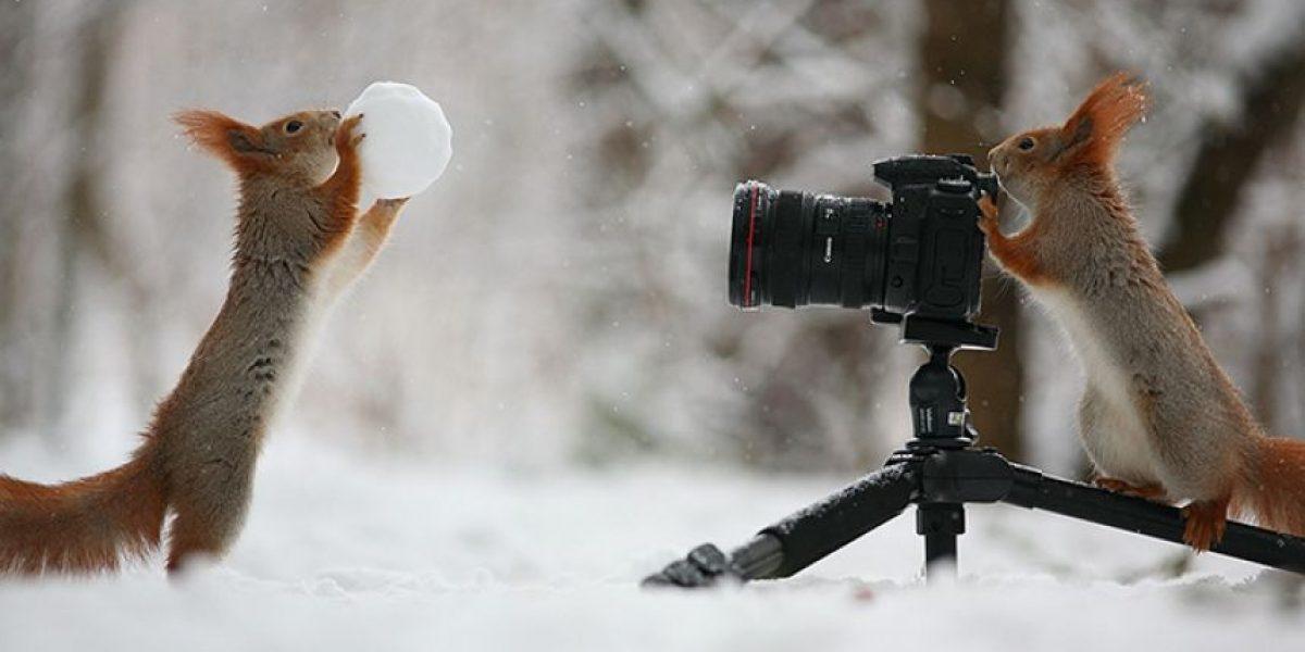 FOTOS. Ellos también disfrutan detrás de las cámaras