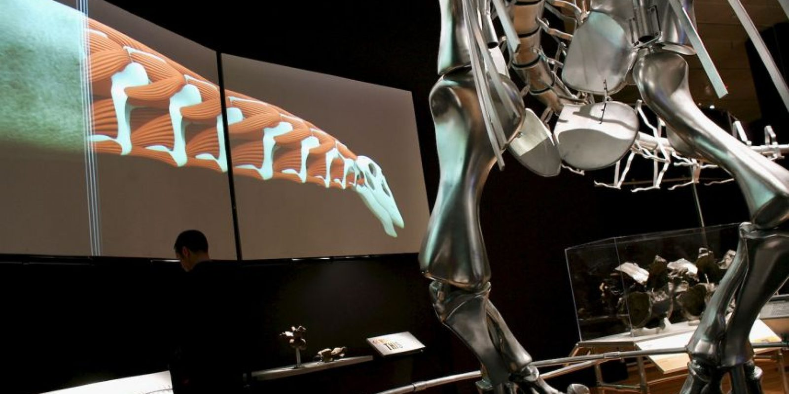 El brontosaurio aparece de una manera o de otra en todo tipo de películas, libros y otras obras. Foto:GETTY