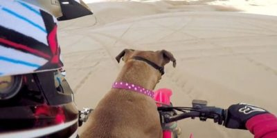 Motociclismo. Foto:GoPro