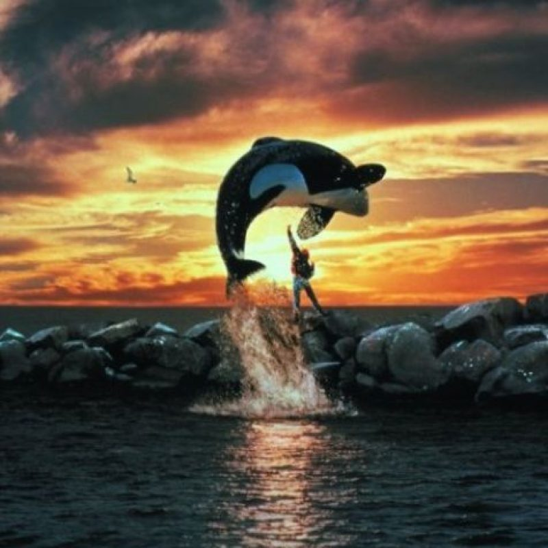 "La ballena Keiko interpretó a ""Willy"" Foto: Warner Bros"