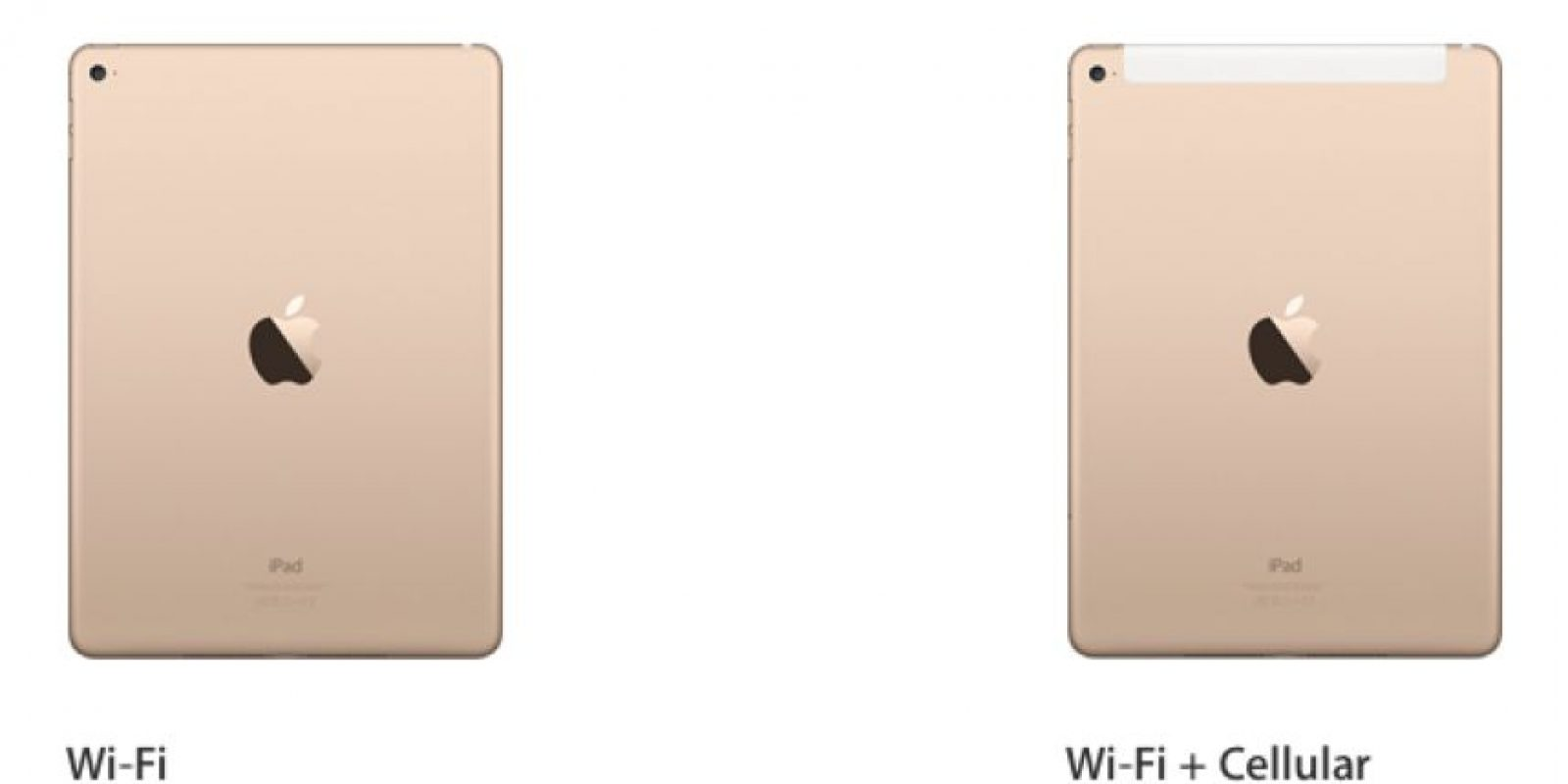 "Existen tres versiones de esta ""tablet"". Foto: Apple"
