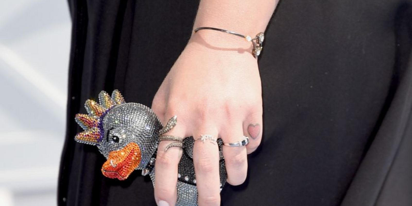 Tal vez su look no sea nada extaño, pero lo extraño es este sospechoso pato. Foto:AFP
