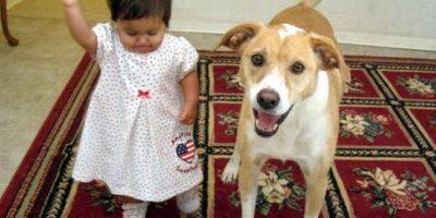 Foto:Tumblr.com/tagged-niño-perro