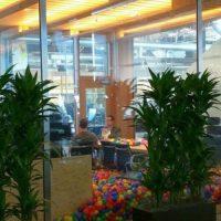 Mark confesó cuántas horas trabaja en su oficina. Foto:twitter.com/cas42it