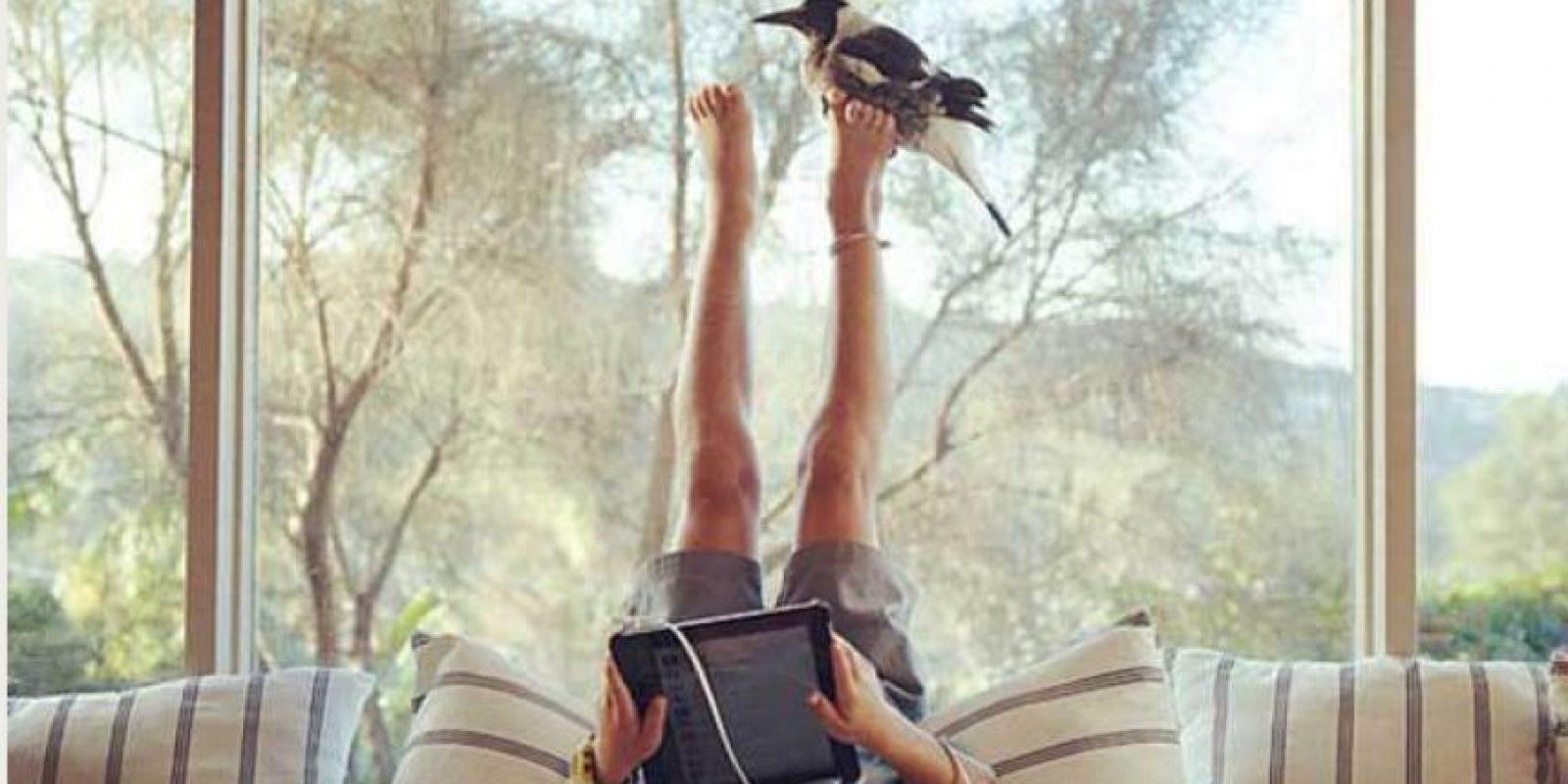 Foto:Cortesía www.bloomphotography.com