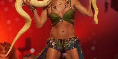 Fan insulta a Britney Spears en pleno concierto