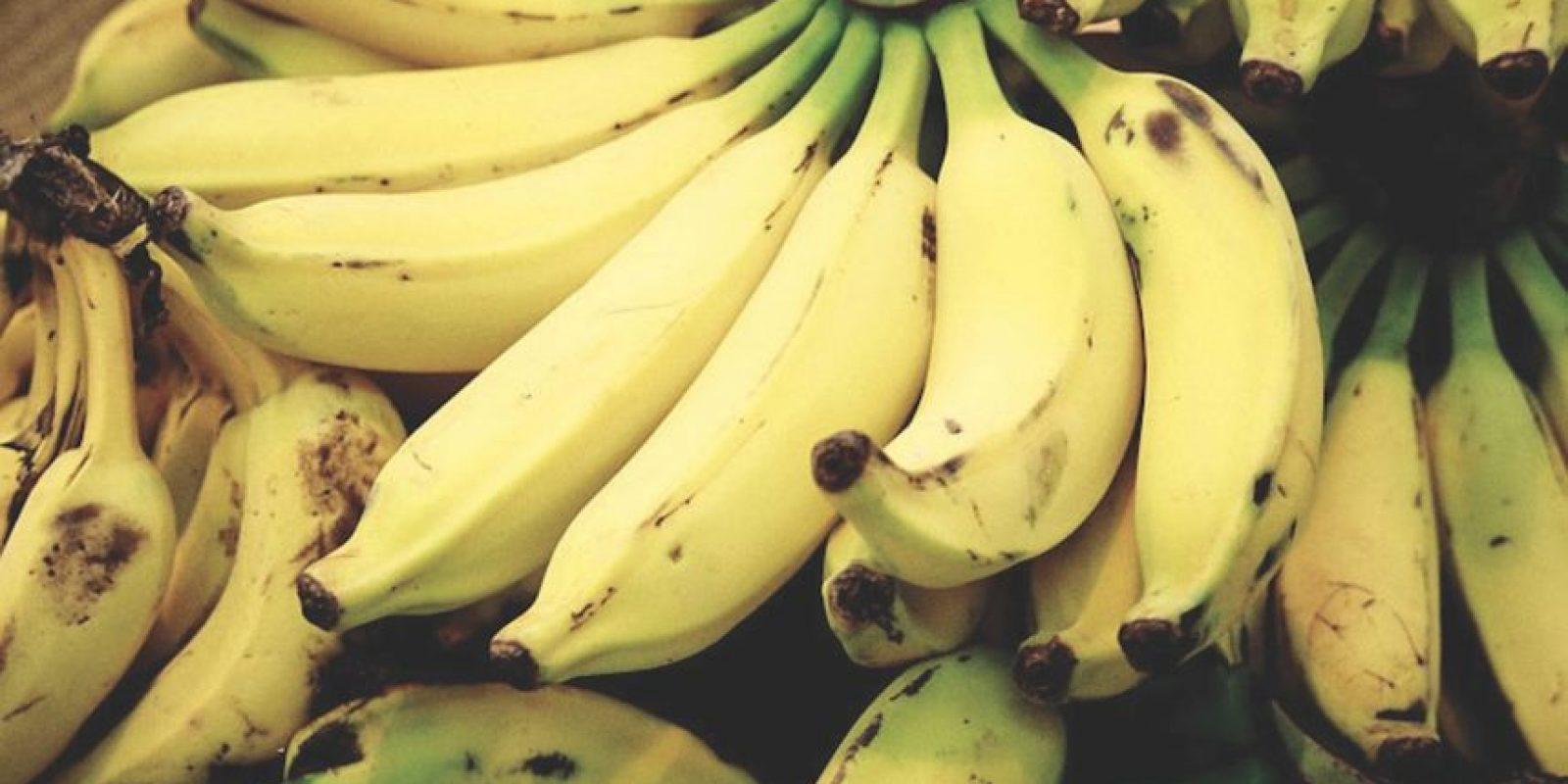Plátano, Aguacate Foto:Cortesía