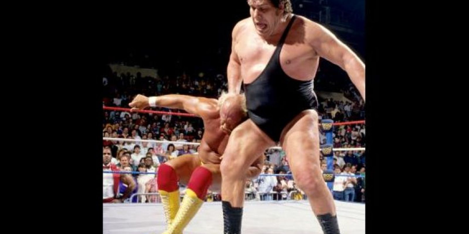 Andre The Giant Foto: WWE