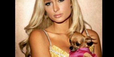 Paris Hilton está devastada tras la muerte de su perro chihuahua