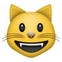13) Gatos. Foto:Pinterest