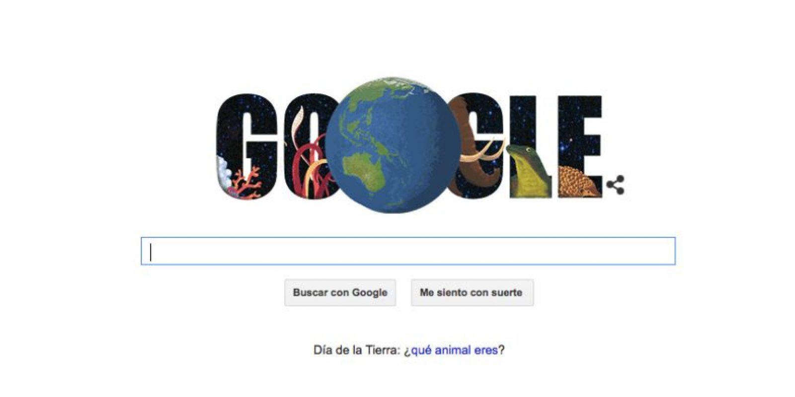 Google les dice qué animales son. Lo interesante es que los animales de los resultados son especies extintas o en peligro de extinción Foto:Google