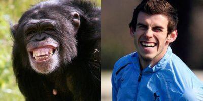 ¡La misma sonrisa! Gareth Bale y el chimpancé. Foto:http://footyjokes.net