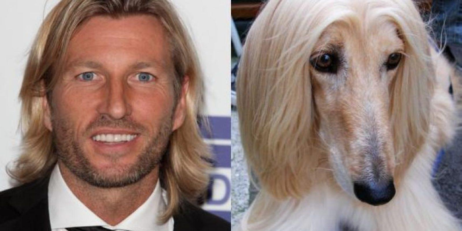 El ex futbolista galés Robbie Savage tiene el mismo cabello que este perro de raza lebrel afgano. Foto:http://footyjokes.net