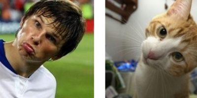 ¡Tiernos! Este gatito y el ruso Andrey Arshavin. Foto:Vía Twitter