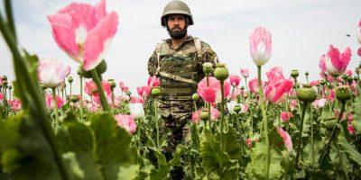 Afganistán (153) Foto:Getty Images