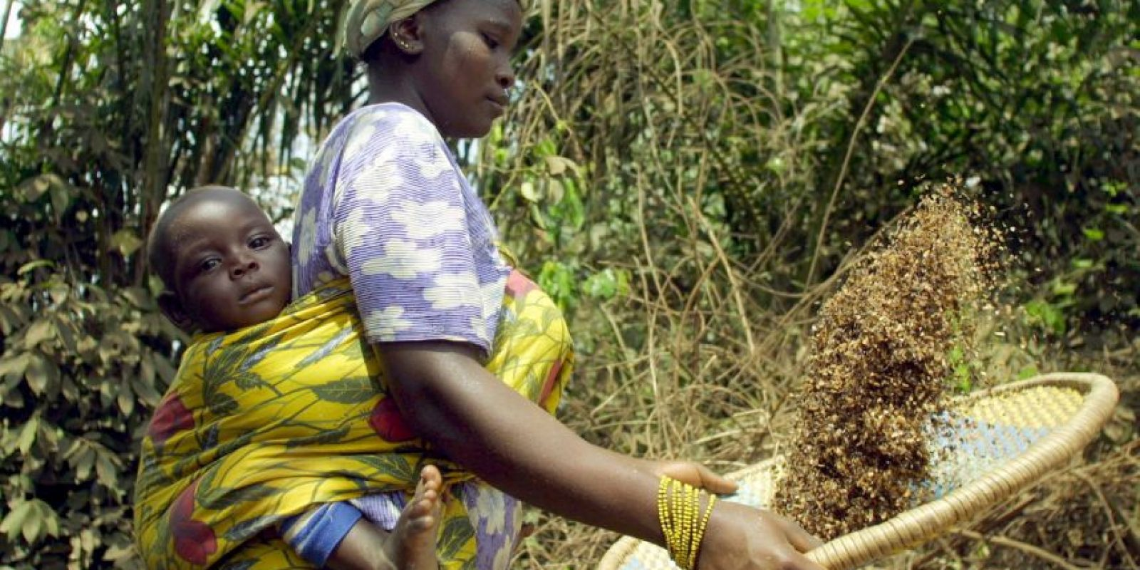 Costa de Marfil (151) Foto:Getty Images
