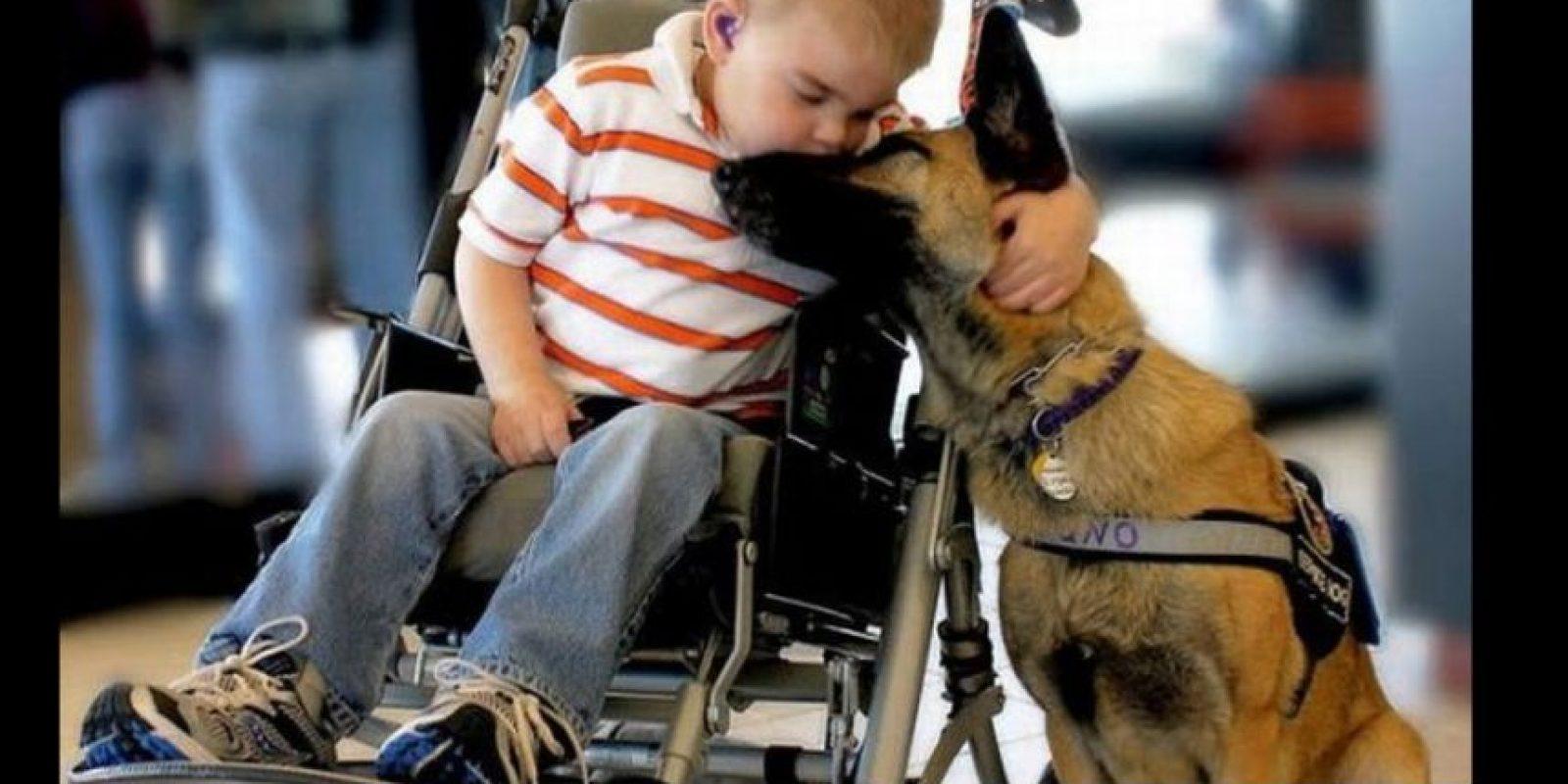 O un beso Foto:Tumblr.com/tagged-perro-humano