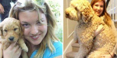 FOTOS: ¡Cuánto han cambiado! 21 perritos antes y después