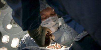 8. Eso ocurre cuando el cuerpo de quien recibe el órgano (beneficiario) niega el órgano nuevo, provocando que no funcione correctamente. Foto:Getty Images