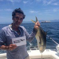 """Su familia organizó una campaña para festejar al """"Potrillo"""" Foto:Instagram/Alexoficial"""
