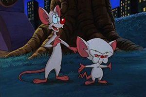 """""""Cerebro"""" es un ratón de laboratorio con una gran mente y ganas de conquistar al mundo; mientras que """"Pinky"""" es otro roedor alterado genéticamente, pero con menor inteligencia. Foto:IMDB"""
