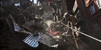 VIDEO: Hombre sobrevivió 62 horas bajo escombros luego de terremoto en Nepal