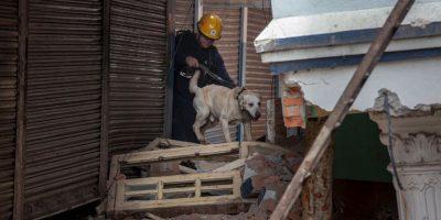 2. El equipo de Cataluña ha colaborado en 13 emergencias por terremotos. Foto:Getty Images