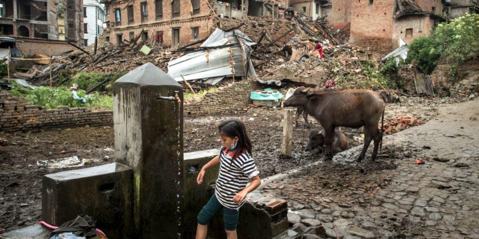 5. Múltiples organizaciones sin fines de lucro se han destacado en el lugar. Foto:Getty Images