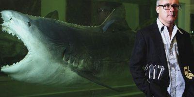 3. Los tiburones pueden llegar a tener 30 mil dientes durante toda su vida. Foto:Getty Images. Información: National Geographic en Español