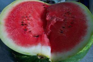 El Departamento de Agricultura de Estados Unidos, indica que tanto esta fruta, como el melón, pierden sus característicos niveles de antioxidantes (licopeno y betacaroteno) cuando son refrigerados. Foto:Wikimedia