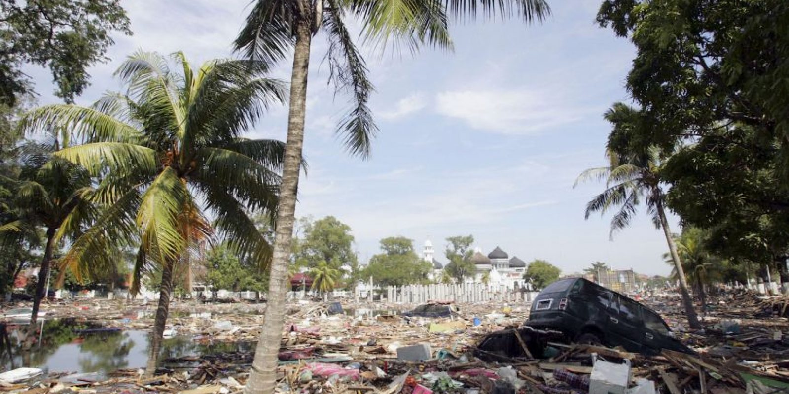 Sucedió en Indonesia, en la isla de Sumatra Foto: Getty Images