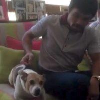 3. Por ser tan adorable con su perro. Foto:Vía instagram.com/MannyPacquiao