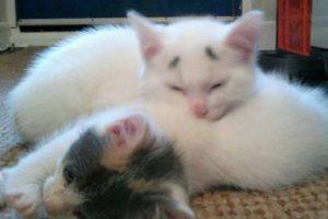 Su mamá se llama Luna Foto:Vía Facebook.com/garybrows