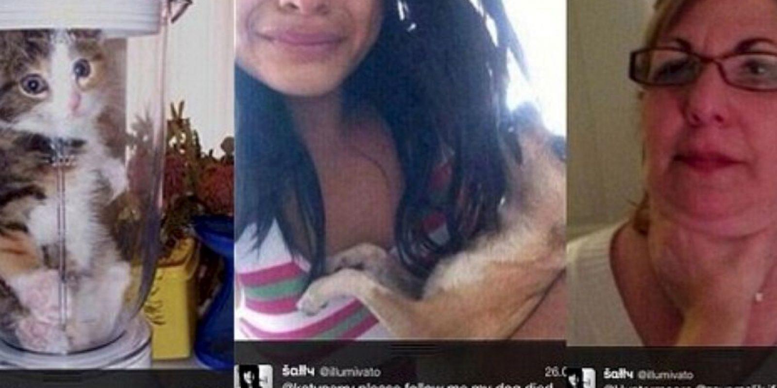 """La sádica fan de 'One Direction': El año pasado, una fan de la agrupación dijo que mató a su chihuahua porque la banda no le respondió sus peticiones de seguirla en Twitter. Solo decía """"Síganme o mato a mi perro"""". Luego le escribió a Lyam Payne """"Sígueme. Mi perro murió"""" y mostraba la foto de un perro muerto. Pero todo fue una farsa, ya que las fotos eran tomadas de Internet. Sin embargo, muchos quieren darle una lección: ya hay 3 mil firmas para que ella vaya a prisión. Foto:vía Twitter"""