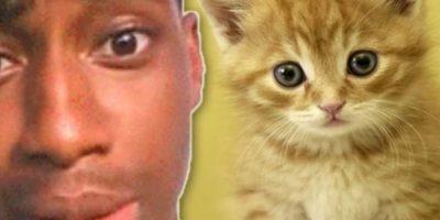"""Pateó a su pequeño gatito: Walter Easley se ganó el odio de Internet cuando tuvo la """"brillante idea"""" de grabarse a sí mismo pateando a su gatito. Inicialmente se burló de los comentarios de odio en Twitter diciendo: """"lol, ahora tengo algo con lo qué reírme todo el día"""". Pero el video se volvió viral y a él lo arrestaron. Tuvo que pasar 60 días en prisión. El gatito no sufrió ningún daño, pero a su dueño le quitaron la custodia. Foto:vía Oddee"""