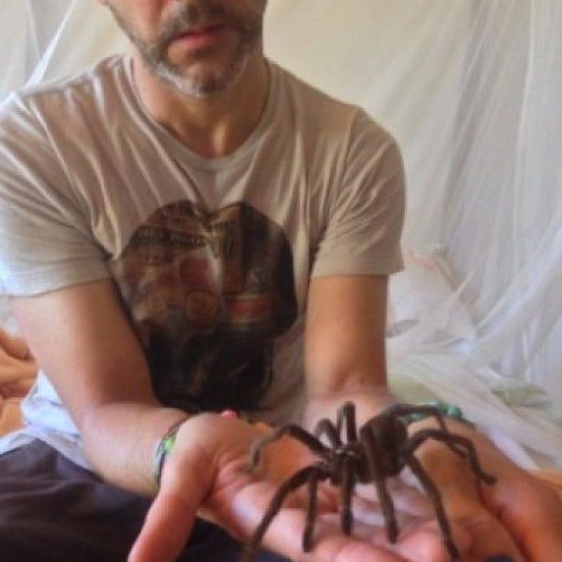 """En la actualidad tiene 38 años y es un explorador del mundo salvaje en el programa """"""""Wild Things mit Dominic Monaghan"""" de la BBC. Foto:Vía twitter.com/DomsWildThings"""