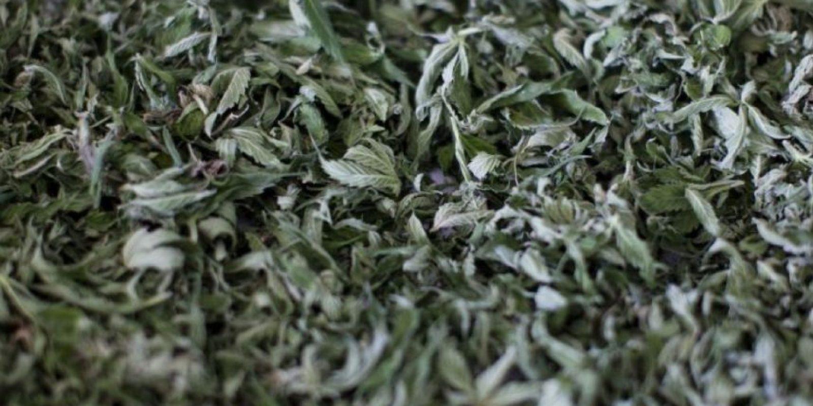 Existe la marihuana medicinal pero se ha indicado que pocos médicos la recetan por falta de información. El Gobierno solo ha autorizado formalmente a una empresa para suministrar la marihuana a las farmacias. Foto:vía Getty Images