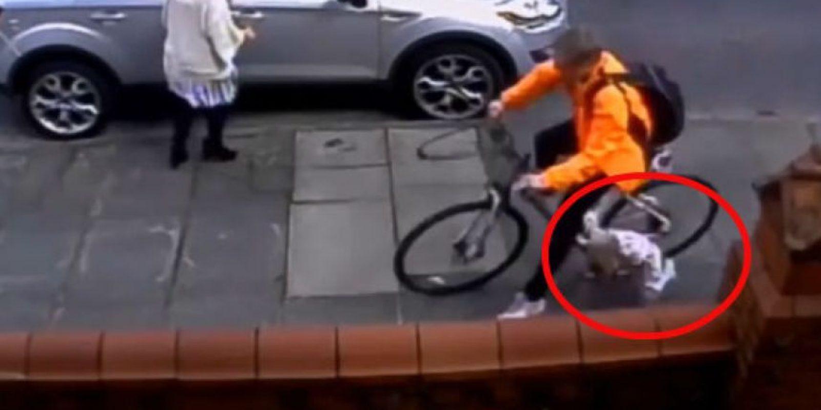 1. Ciclista arrolló a niña y no se detuvo para evitar más daño o para saber si aún seguía con vida Foto:Via Live Leaks
