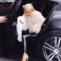 Es una de las celebridades más perseguidas por los medios internacionales. Foto:vía instagram.com/kimkardashian