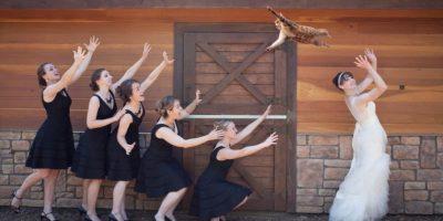 """FOTOS: Novias """"lanzan"""" gatos en lugar de ramos de flores en su boda"""