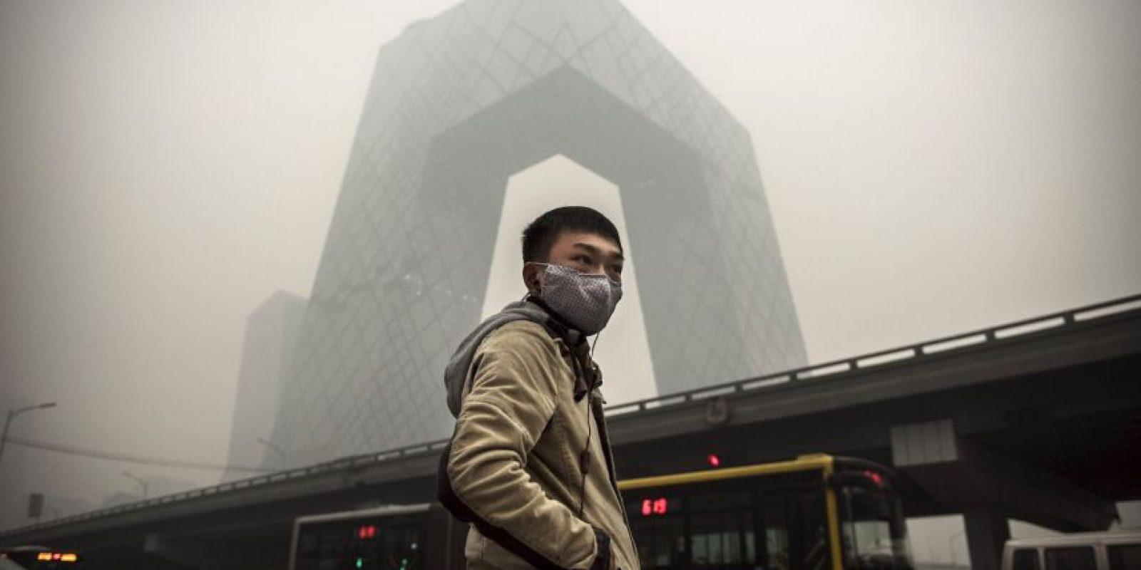 De acuerdo a un estudio, la contaminación, la guerra y la cacería podría acabar con la vida humana Foto:Getty Images