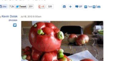 En 2011, estos fueron los tomates que se vieron Foto:Captura de Pantalla